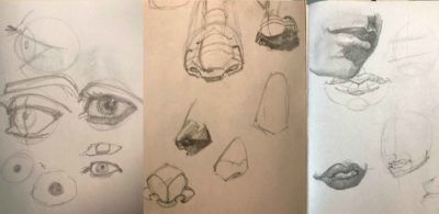 Graphite sketches of eyes, noses, mouths.