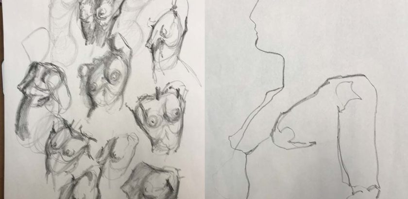 Torso Sketches and Blind Contour Drawing